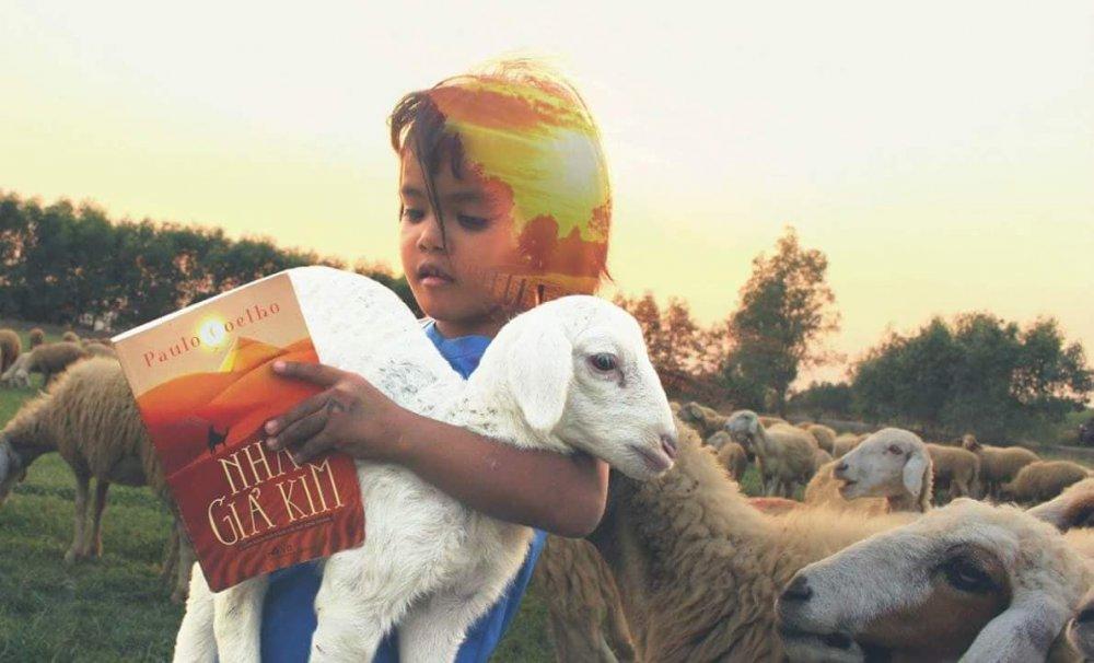 Review sách Nhà Giả Kim - Cuốn sách dẫn đường chỉ lối hay nhất mọi thời đại