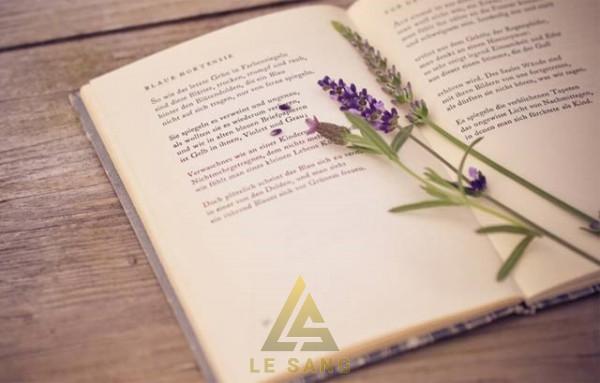 Lau bụi là việc cần thiết để sách sạch sẽ và đẹp hơn